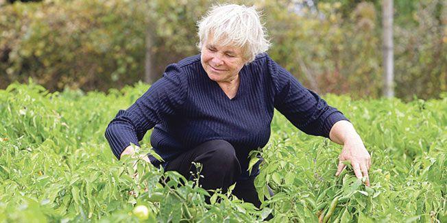 Biodinamička poljoprivreda – Poljoprivreda za treće tisućljeće