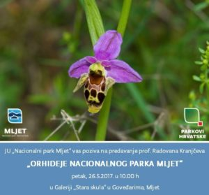 "Predavanje ""Orhideje Nacionalnog parka Mljet"""