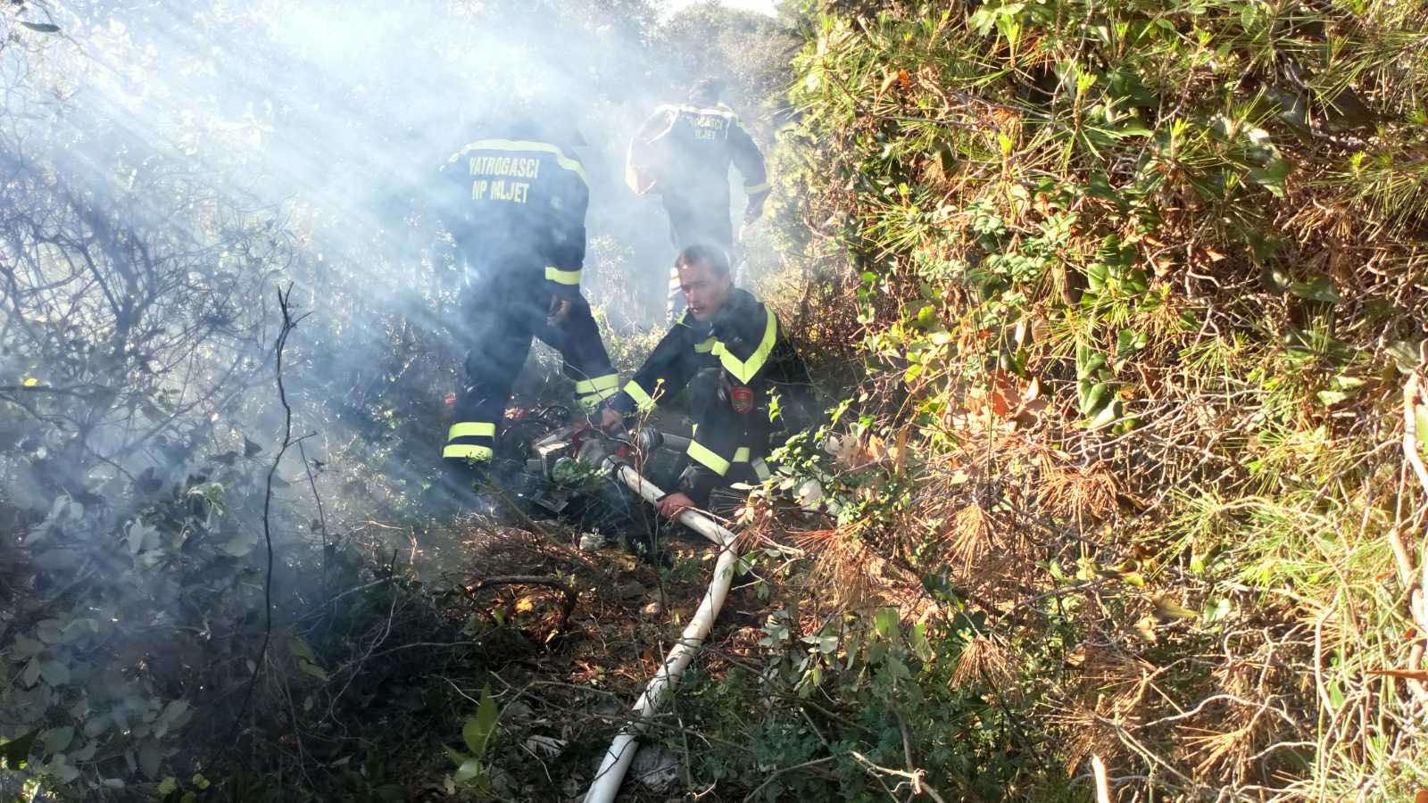 Vatrogasna vježba u NP Mljet