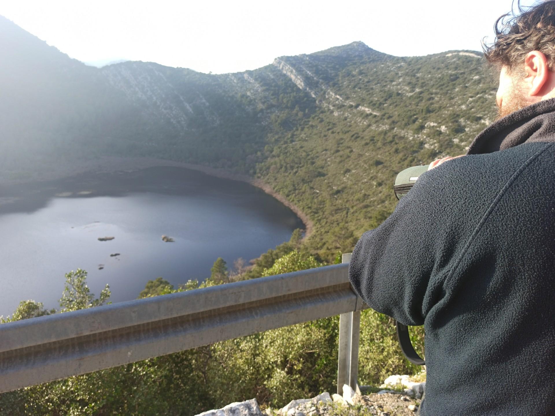 Međunarodno zimsko prebrojavanje ptica vodarica (IWC) drugi put na Mljetu