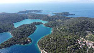 Odrađene terenske izmjere za nacrt Programa zaštite, njege i obnove šuma za NP Mljet