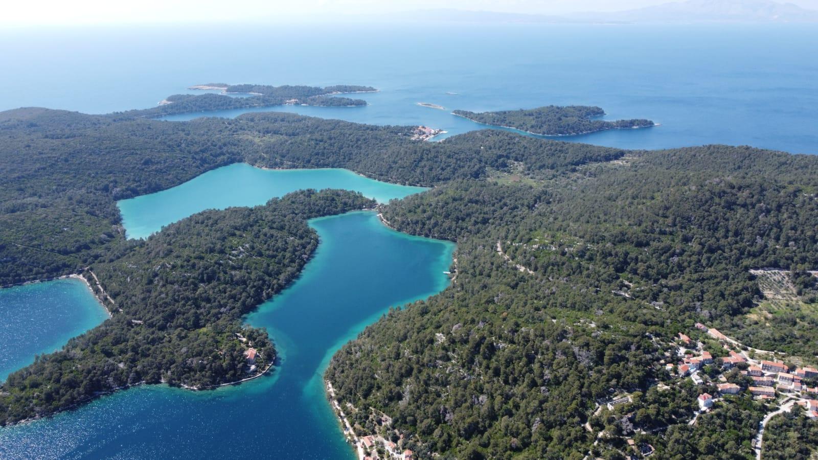 Read more about the article Odrađene terenske izmjere za nacrt Programa zaštite, njege i obnove šuma za NP Mljet